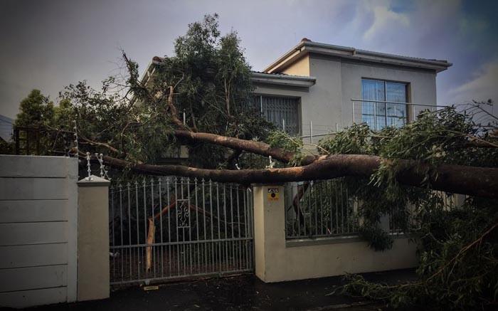Tha Cape's Storms